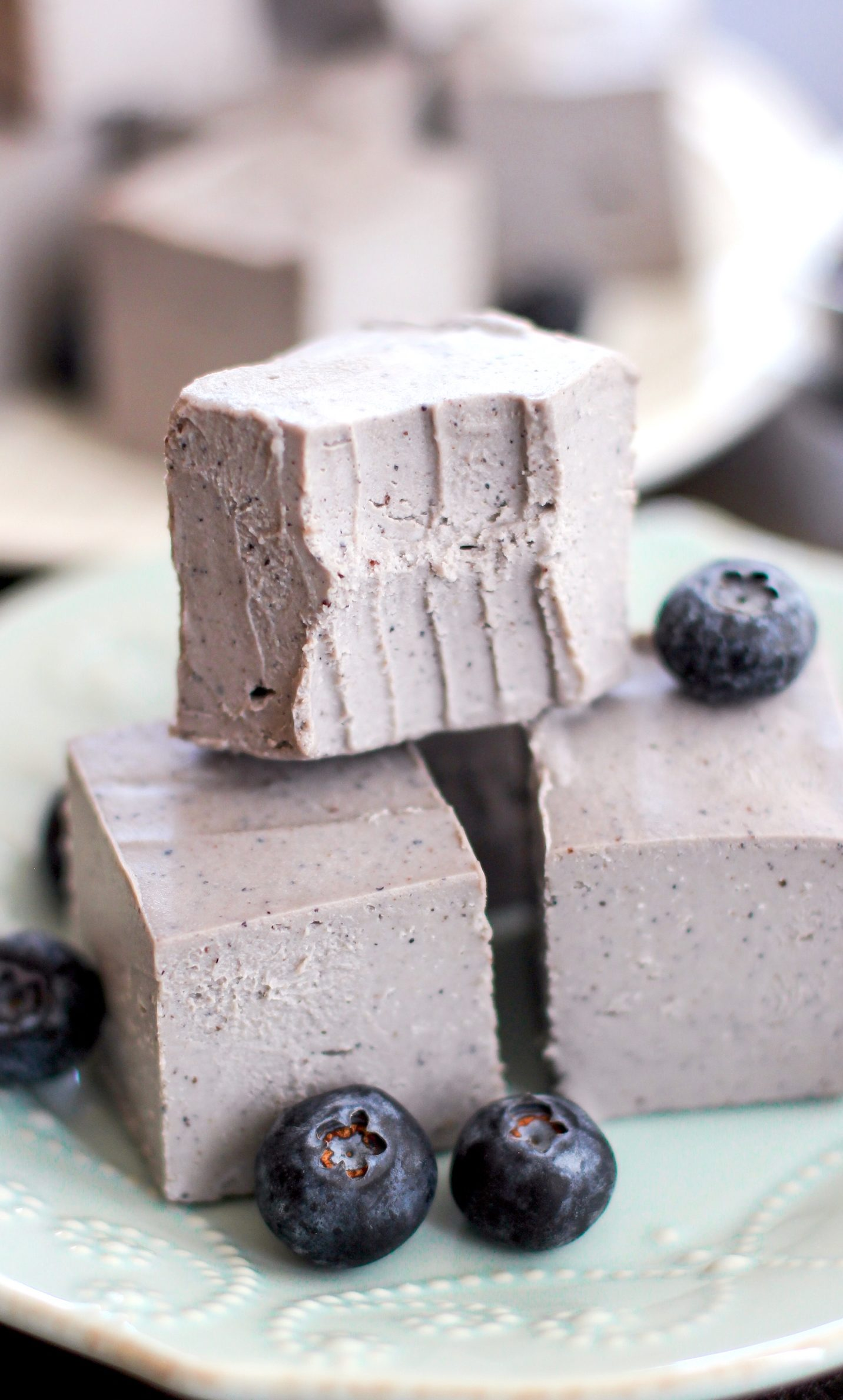 Healthy Raw Blueberry Coconut Fudge (refined sugar free, low carb, gluten free, vegan) - Healthy Dessert Recipes at Desserts with Benefits