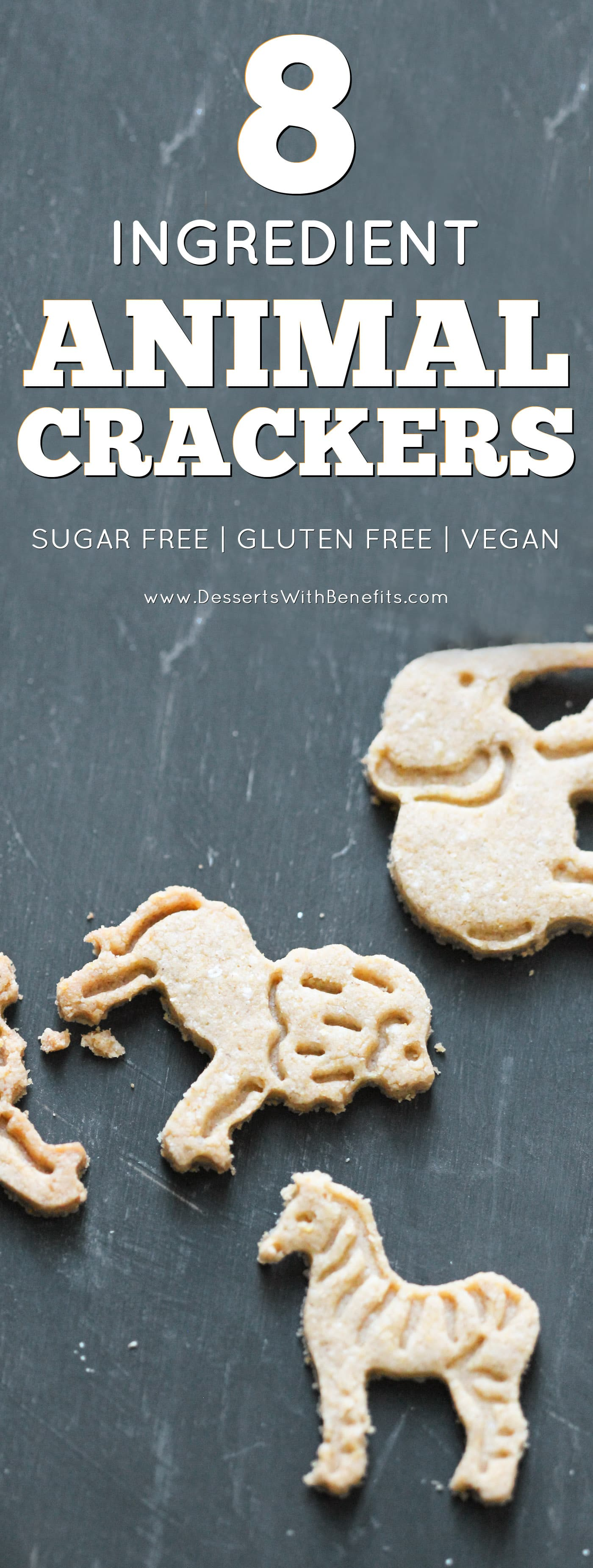 Healthy Back To School Recipe: Healthy Homemade Animal Crackers