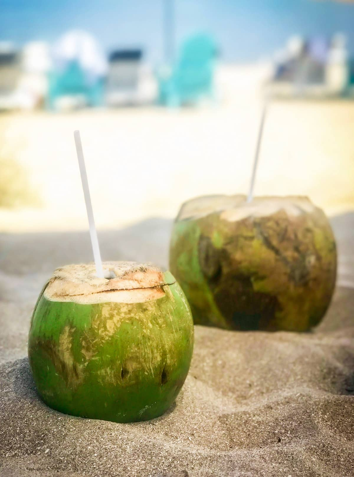 Fresh coconuts on the beach bar at Villa del Palmar at the Islands of Loreto. Looking for the BEST vacation destination to treat yourself? From a quiet getaway to soak up the sun or to enjoy your honeymoon, the Villa del Palmar at the Islands of Loreto, Mexico is one of those hidden gems you need to visit for yourself. This unique, affordable resort is packed with fun activities such as golfing, kayaking, paddle boarding, snorkeling, scuba diving, yoga, dancing, whale watching, and fishing. Whatever you're looking for in your upcoming getaway, Villa del Palmar offers it!
