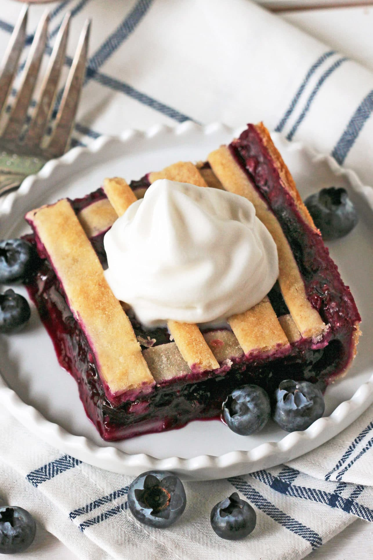 5-ingredient Blueberry Lattice Bars (vegan, low fat, low sugar)