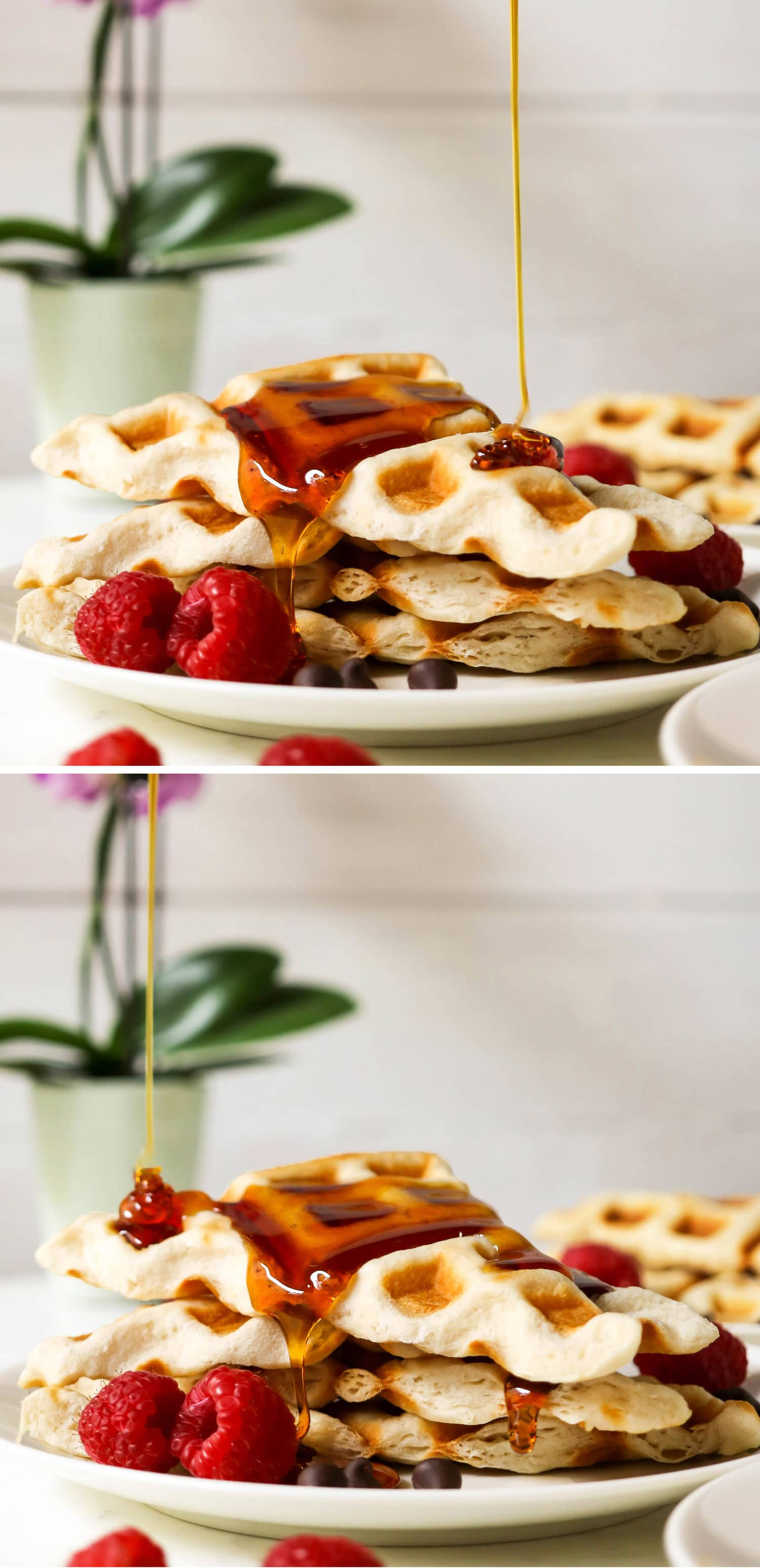 Easy Crescent Waffles - low sugar, low fat, dairy free, and vegan, with just 90 calories each! Healthy dessert recipes at the Desserts With Benefits Blog (www.DessertsWithBenefits.com)